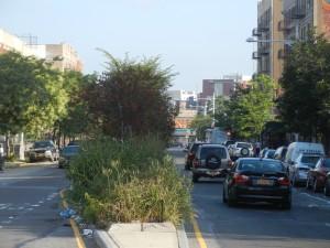 South Bronx Greenway